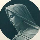 星を仰ぎ、マリアの御名を呼べ Respice Stellam Voca Mariam(聖ベルナルドの説教より)